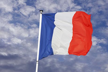 Made in France - Sapo Sapo