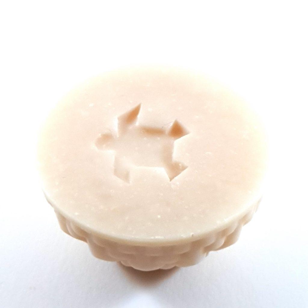 Coconut milk soap and sugar cane under- Sapo Sapo